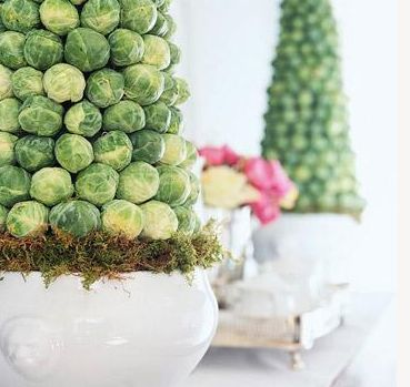Brussels Sprout Topiaries
