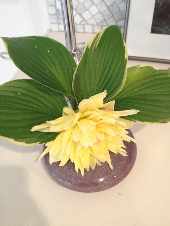 Single Dahlia Floral Arrangement