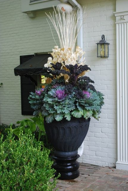 Container Gardening for Fall - OMG Lifestyle Blog