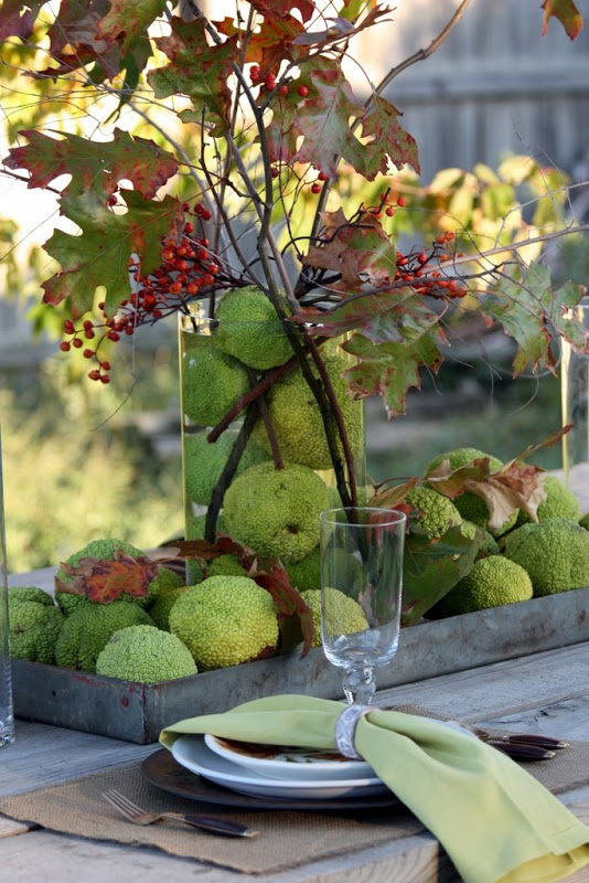 Monkey Balls (aka Hedge Apples) Centerpiece