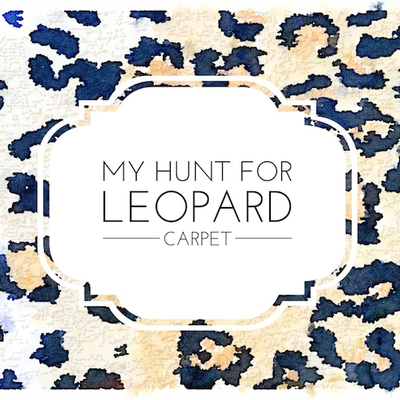 My Hunt for Leopard Carpet