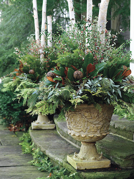 Gorgeous christmas urns omg lifestyle blog for Garden arrangement of plants