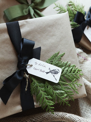 christmas gift wrap with evergreen cutting