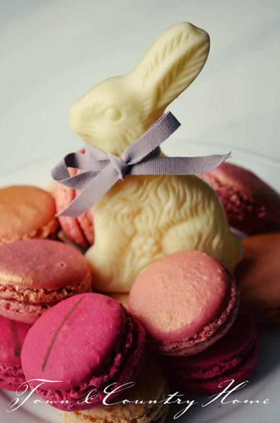 White Chocolate Bunny with Macaroons