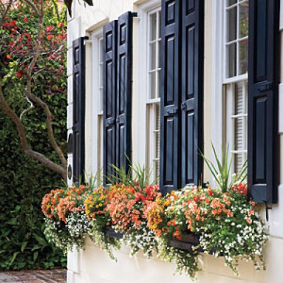 Colorful Charleston Window Boxes | OMG Lifestyle Blog