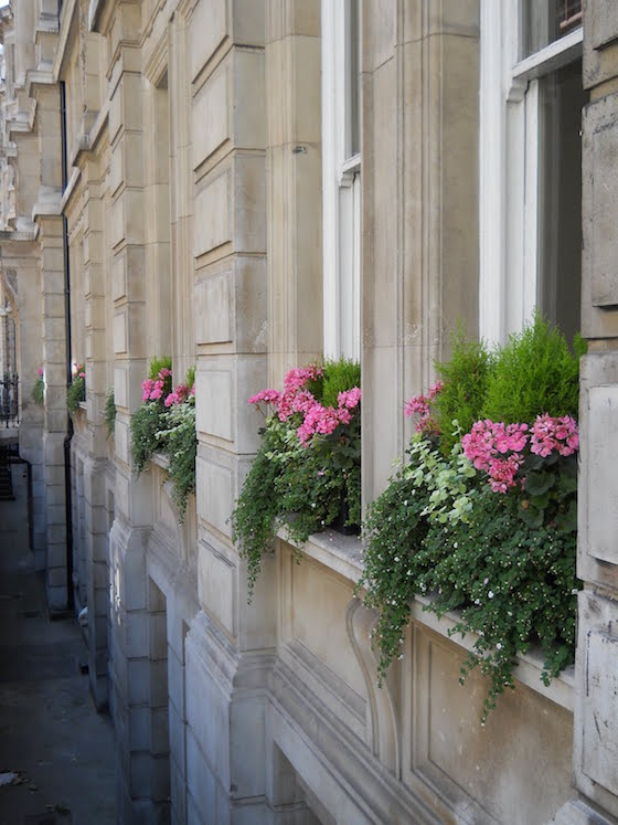London Town Home Window Boxes | OMG Lifestyle Blog