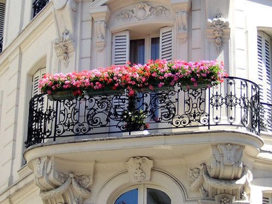 Paris Balcony with beautiful window boxes | OMG Lifestyle Blog