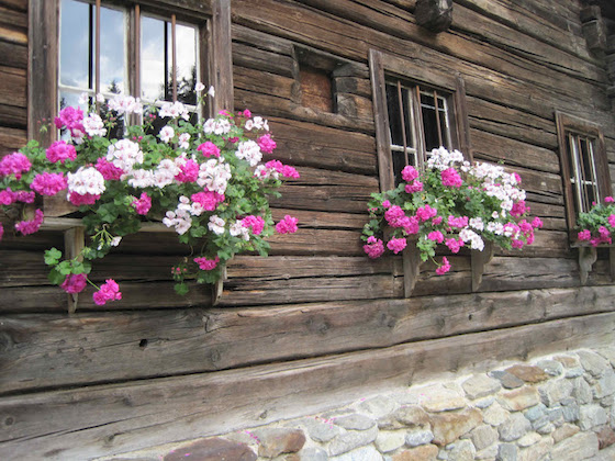 Rustic Austrian pink window boxes | OMG Lifestyle Blog