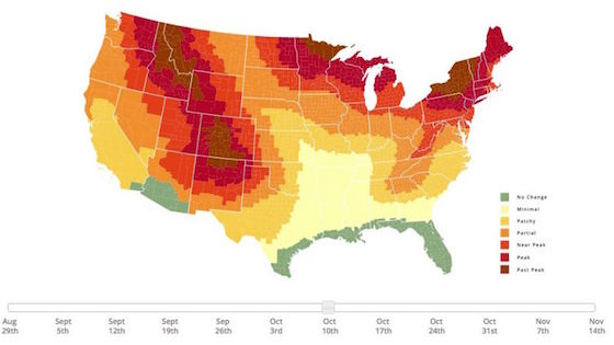 Interactive Fall Foliage Map