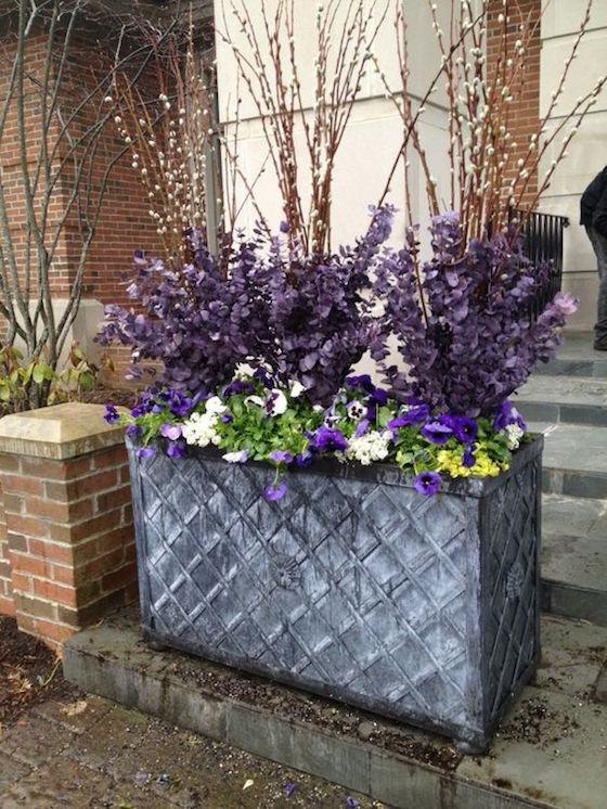 Stunning Spring Pots Amp Urns Omg Lifestyle Blog