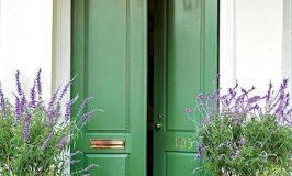Welcoming Painted Front Doors