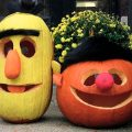 Bert and Ernie Pumpkins