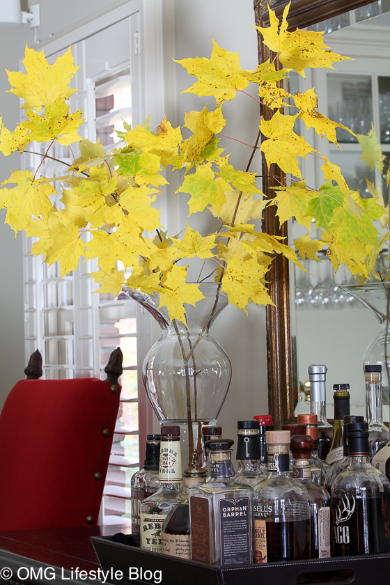 Cut color fall branches and bring indoors for some color
