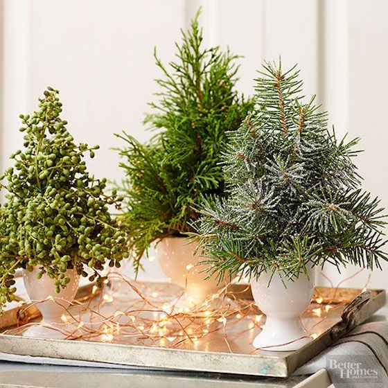 12 Ways To Use Evergreen Cuttings In Your Holiday Decor